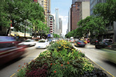 City street , Chicago. Royalty Free Stock Image