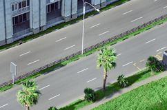 City street with an empty road, surrounded by palm trees and lawn. Stock Photo