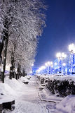 City street with trees and benches covered in snow with brightly stock photography