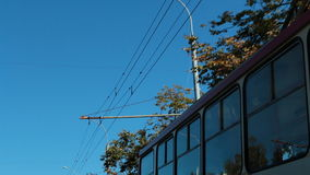 City street. Trolleybus and overhead wires. Low angle view shot of a moving trolley bus, overhead hanging wires, tree tops and blue sky stock video