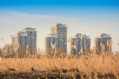 City suburbs with lake ecosystem, Văcărești Nature Park buildings