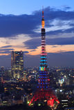 The city of Tokyo and Tokyo Tower Olympic illumination Royalty Free Stock Photos