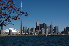 city of toronto amazing skyline  Royalty Free Stock Photo