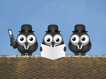 City Traders. Comical business city trader birds perched on a rooftop against a clear blue sky Royalty Free Stock Image