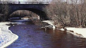 City traffic on bridge above river in spring stock video