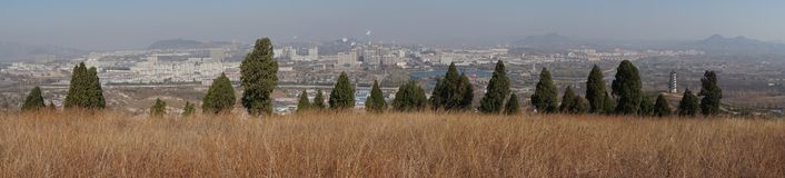 City and trees and grass in winter Royalty Free Stock Photo