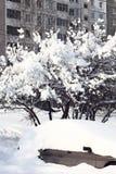 City under snow. Stock Photography