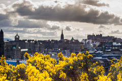 City view on the Houses from the Hill in Edinburgh, Scotland Stock Photography