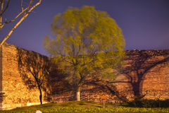 City Wall Park Green Willow Beijing China Royalty Free Stock Photography