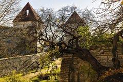 City wall in Tallinn, Estonia Stock Photos
