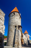 City walls and towers in Tallinn Royalty Free Stock Image