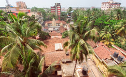 Citycape with palms, houses and tiled roofs of tropical town Royalty Free Stock Photography