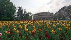 Cityhall di Belgrado Immagini Stock Libere da Diritti