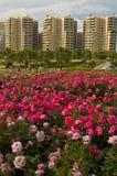 citypark ουρανοξύστες στοκ φωτογραφίες