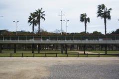 Citypark med palmtrees i den gamla kanalen av den Turia floden i Valencia, Spanien Parc Turia i Valencia Royaltyfria Bilder