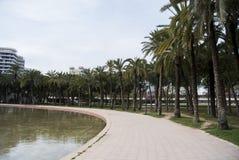 Citypark med palmtrees i den gamla kanalen av den Turia floden i Valencia, Spanien Parc Turia i Valencia Royaltyfri Fotografi