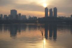 Cityscape along Han river in Seoul at dusk Stock Photography