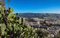 Cityscape of Athens with white buildings architecture, mountain, cactus and blue sky royalty free stock photo