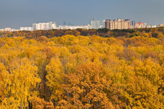 Cityscape with autumn urban park Stock Images
