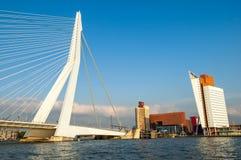 Cityscape av Rotterdam med Erasmus Bridge Royaltyfri Foto
