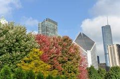 Cityscape in Chicago in de herfst royalty-vrije stock afbeeldingen