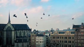 Cityscape With Church Bells And Birds. Flock of birds swooping across city view with cathedral and historic buildings stock video