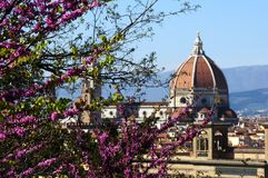Cityscape with church Santa Maria del Fiore at spring day with flowers, Florence Stock Image