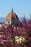 Cityscape with church Santa Maria del Fiore at spring day with flowers, Florence Stock Photos