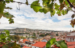 Cityscape of the historical city Tbilisi in frame of grape leaves, Georgia country Royalty Free Stock Photo