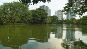 cityscape I grattacieli del distretto aziendale stanno nei precedenti di un parco con un lago Stile urbano video d archivio