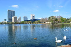 Cityscape Orlando Stock Photography