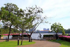 The cityscape in a park with a lake, trees and cyclists. Travel to Bangkok, Thailand. The cityscape in a park with a lake, trees and cyclists royalty free stock photo