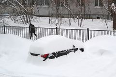 Cityscape - parkerade bilar som täckas med snö royaltyfria foton