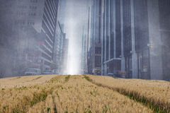 Cityscape projection over fields Royalty Free Stock Image