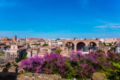 Cityscape of Rome near the Colosseum Royalty Free Stock Photo
