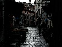 Cityscape from Rovinj, Croatia, with the shilouette of a seagull and a woman, moody image stock photos