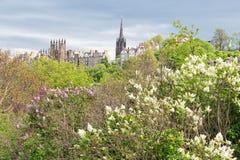 Cityscape Scottish Edinburgh seen from Princes Street Gardens. In springtime royalty free stock photo