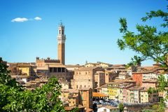 Cityscape of Siena, aerial view with the Torre del Mangia, Tuscany Italy Stock Images