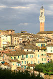 Cityscape of Siena with the tower, vertical Stock Image