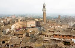 Cityscape of Siena, Tuscany. Tile roofs and 14th century tower Torre del Mangia, Italy. UNESCO Heritage Site. Cityscape of Siena, Tuscany. Tile roofs and 14th stock photo
