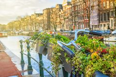 Cityscape on a sunny winter day - view on the parked bicycle with flowers on a canal background in the historic center of Amsterda