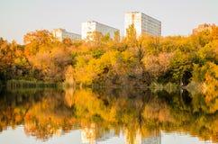 cityscape tempa Drzewa Bereg staw płocha Jesień krajobraz zdjęcia stock