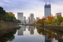 Cityscape of Tokyo with autumnal park Royalty Free Stock Images