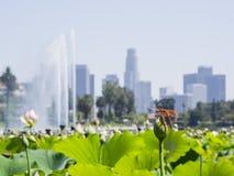 Cityscape van de binnenstad van Echo Lake en van Los Angeles Royalty-vrije Stock Foto's
