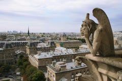 Cityscape van Notre Dame de Paris stock afbeeldingen