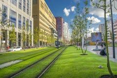 Cityscape van Rotterdam Stock Foto's