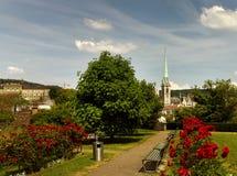 Cityscape van Zürich met Predigerkirche-binnen kerk en rozenbloemen royalty-vrije stock foto's
