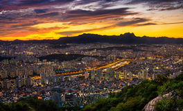 Cityscape vid nattsikt Royaltyfri Foto
