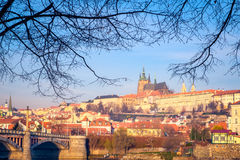 Cityscape view of Prague castle framed in tree branches Royalty Free Stock Images