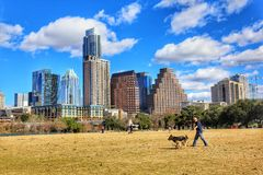 Cityscapes. Sportive man walks his dog in Lady Bird Lake, along beautiful Austin downtown skyline cityscapes stock images